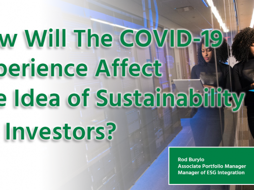 How will the COVID-19 affect sustainability for investors